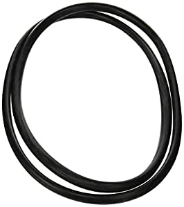 Amazon Com Zodiac R0357800 Tank O Ring Replacement For