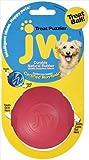 Jwp Toy Amaze-A-Ball Medium