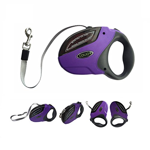 Best Value for Money Retractable leash