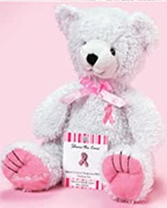 Breast Cancer Awareness Plush Teddy Bear and Pin
