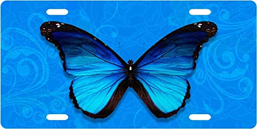 (Blue Butterfly Customizable Auto Truck Car Front Tag Personalized Aluminum Metal License Plate Frame Cover 12 x 6 Inch)