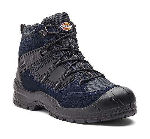 Chaussure Sécurité Montante Everyday De noir Marine Dickies Bleu nr6xn5qzZ