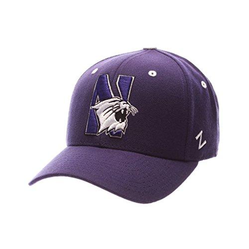 スイ利用可能警報ZephyrメンズNorthwestern Wildcats DHS Zwool Fitted Hat
