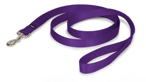 "PetSafe Nylon Leash, 1"" x 6', Deep Purple"