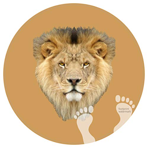DECER Bedroom Floor Shower Round Rugs Towel Non Slip bathroon mat-African Lion