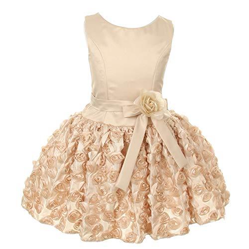 KiKi Kids USA Big Girls Champagne Satin Embroidered Rosette Dropwaist Flower Girl Dress 10 from KiKi Kids USA