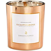Benevolence LA Scented Candles Soy Candles - Aromatherapy Candles Relaxing Candles Rose Gold Glass Decorative Candle Perfect Scented Candles for (Eucalyptus Orange)
