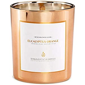 Benevolence-LA-Scented-Candles-Soy-Candles-Aromatherapy-Candles-Relaxing-Candles-Rose-Gold-Glass-Decorative-Candle-Perfect-Scented-Candles-for-Eucalyptus-Orange