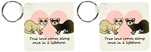 3dRose True Love Comes Along Once in a Lifetime Cute Ferret Love Design - Key Chains, 2.25 x 4.5 inches, set of 2 (kc_10790_1)