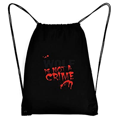 Heavy Duty Extreme Pak Tote Bag 21.5x12.5x10.5in LUTBIC free shipping