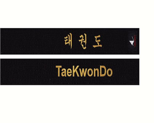 Black belt taekwondo essays on friendship All About Essay Example   Galle Co