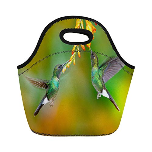 (Semtomn Neoprene Lunch Tote Bag Two Flying Hummingbirds in Flight Action Scene Tourmaline Sunangel Reusable Cooler Bags Insulated Thermal Picnic Handbag for Travel,School,Outdoors,Work)