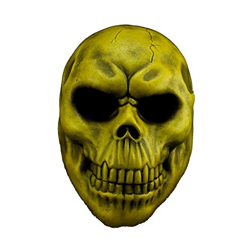 YUFENG Movie Theme Animated Mask Halloween Party Resin Collection Props, Masquerade Costume Decoration,Halloween,Party,Cosplay (skull mask (Three Guys Halloween Costumes)