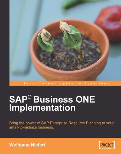SAP Business ONE Implementation Pdf