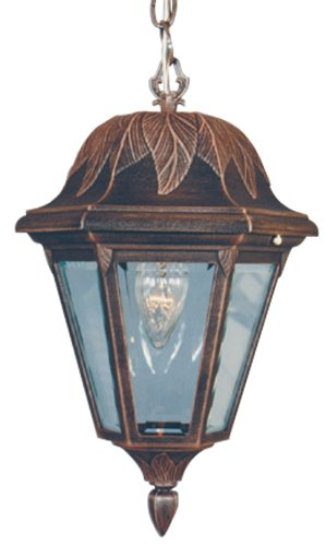 Special Lite Floral Lighting (Special Lite Products Floral F-2944-CP/BV Medium Chain Pendant Light, Copper)