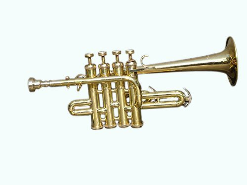 Queen Brass Top Quality Picollo BB Pitch Piccolo Trumpet Brass Finish With Mouth Piece MI 038 by Queen Brass