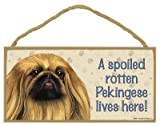(SJT61951) A spoiled rotten Pekingese lives here wood sign plaque 5