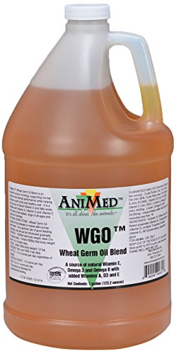 AniMed Wheatgerm Oil Pure for Horses of All Ages and Classes by AniMed