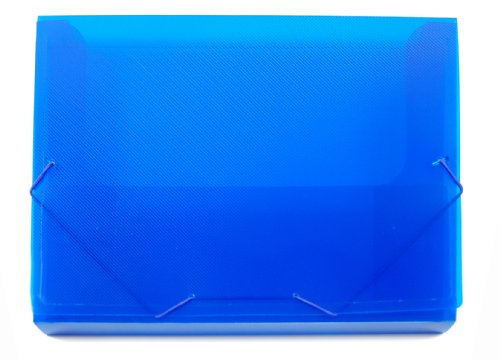 Lion File-N-Tote Plastic Document File, 13 x 9-7/8 Inches, 1 Inches capacity, Translucent Blue, 1 File (45100-BL)