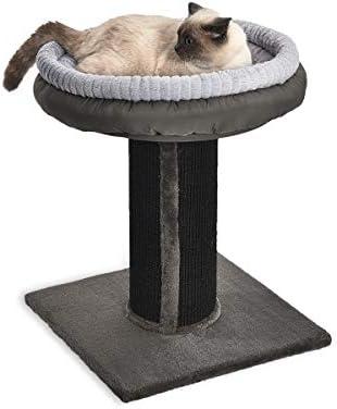 AmazonBasics - Torre en árbol con poste rascador y cama para gatos ...