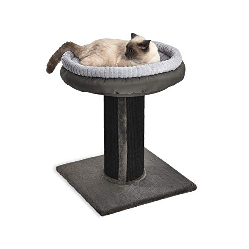 AmazonBasics Extra Large Cat Scratching Post Tree Tower With Bed – 19 x 19 x 26 Inches, Black