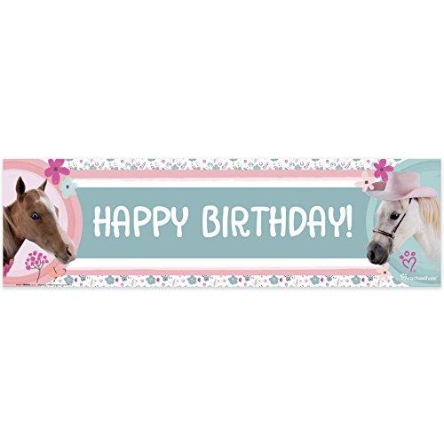 (Rachael Hale Party Supplies Beautiful Horse Birthday)