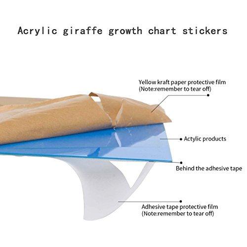 New Hiltow Acrylic Giraffe Growth Chart Stickers Measure Height
