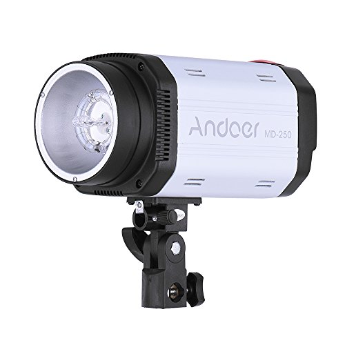Andoer MD-250 250WS GN50 Studio Photo Strobe Flash Photography Speedlight Lamp for Studio Portrait Certificate Shooting by Andoer
