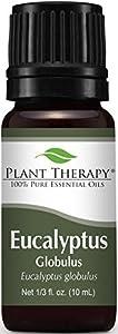 Plant Therapy Eucalyptus Essential Oil
