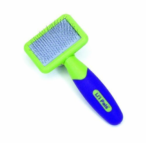 Li'l Pals Kitten Slicker Brush with Coated Tip Pins (2-Pack)