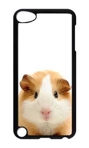 Reg Guinea Pig - iPod 5 Case,VUTTOO® Cover With Photo: Guinea Pig For iPod Touch 5 - PC Black Hard Case