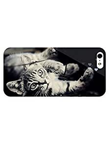 3d Full Wrap Case for iPhone 5c Animal Curious Kitten28