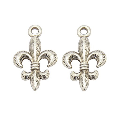 NBEADS 20 Pcs Alloy Tibetan Style Fleur De Lis Charms Pendant for Jewelry Making, Antique Silver, 24x14x3mm (Fleur De Lis Large Charm)