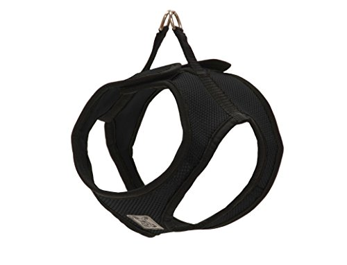 RC Pet Products Cirque Soft Walking Step In Dog Harness, XXX-Small, Black