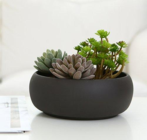 Modern Unglazed Ceramic Succulent Planter