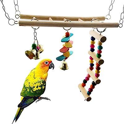 Juguete para Loro, majglgE Parrot Climb Escalera de pie, Columpio, Puente, Periquito, Jaula para Mascotas, Juguete – Color al Azar: Amazon.es: Productos para mascotas
