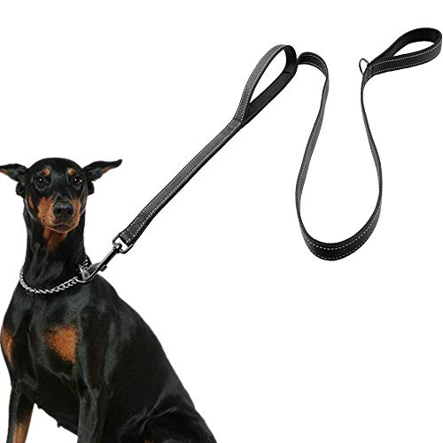 Eco-clean Dog Leash for Large Dogs, 2 Handles for Extra Control, 6 FT Long with Reflective Stitch for Night Walking