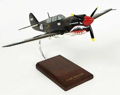 P-40E Warhawk - 1/32 scale model
