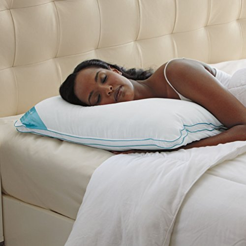 Brookstone BioSense Memory Foam Classic Pillow with Better T