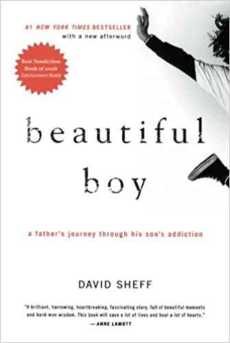 Beautiful Boy: A Father's Journey Through His Son's Addiction ...