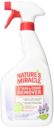 Nature's Miracle Stain & Odor Remover, Lavender Scent, 32-Ounce Spray (5385) (Best Way To Get Rid Of Cat Urine)