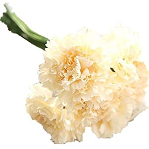 COLOV Artificial Flower Artificial Plastic Home Office Wedding Garden Decoration(Champagne 10.27) 106