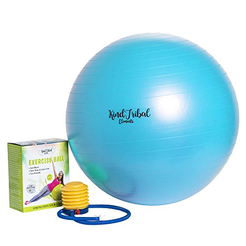 Pro Fitness 65cm Exercise Ball By KindTribal Elements: Anti-Burst/Slip Balance Gym Body Ball-For Yoga, Pilates, With Foot Pump-Flexible Therapeutic, Birthing-Use At Home-As Office (Element Treatment Table)