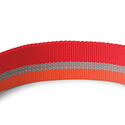 Pictures of RUFFWEAR Chain Reaction Collar Medium Kokanee Red 5