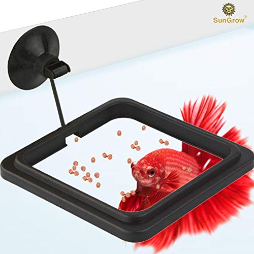 """4"""" x 4"""" Square Feeding Ring - Practical Floating Food Square - Reduces Waste & Maintains Water Quality - Suitable for Flakes & Other Floating Fish Foods - for Guppy, Goldfish and Other Smaller Fish from SunGrow"""