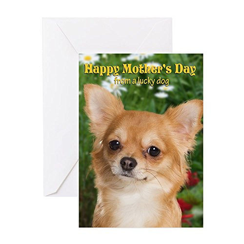 CafePress Chihuahua Mother's Day Card Greeting Card, Note Card, Birthday Card, Blank Inside Glossy