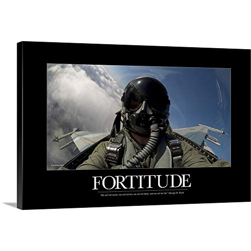 (Kate Lillyson Premium Thick-Wrap Canvas Wall Art Print Entitled Military Poster: Self-Portrait of a Pilot in The Cockpit of a F-15E Strike Eagle 48