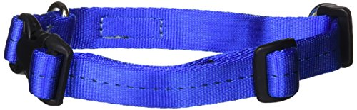 Stunt Puppy Everyday Collar Small