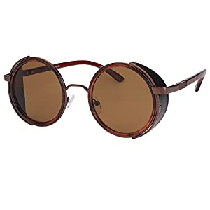 Sunclassy Metal Frame Side Shield Oval 52mm Hipster Round Sunglasses Vintage Retro Steampunk Gothic Hippie Circle Retro (Brown, Brown)