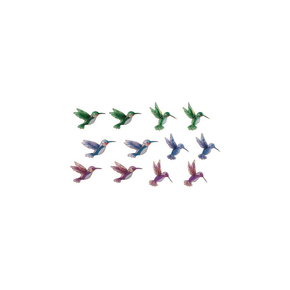 Refrigerator Fridge Magnet Collection Hummingbird Set Of